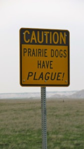 Sign in Interior, South Dakota