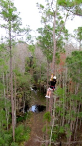 Ziplining at Forever Florida. Photo by Donna Hailson