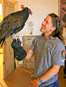 Janice Stroud-Settles with Edwina, a rescued turkey vulture.