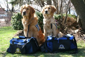 Luther and Ruthie, bags packed, ready to deploy