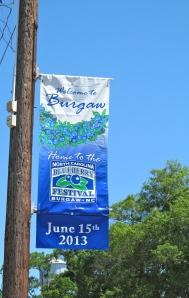 Blueberry Festival sign