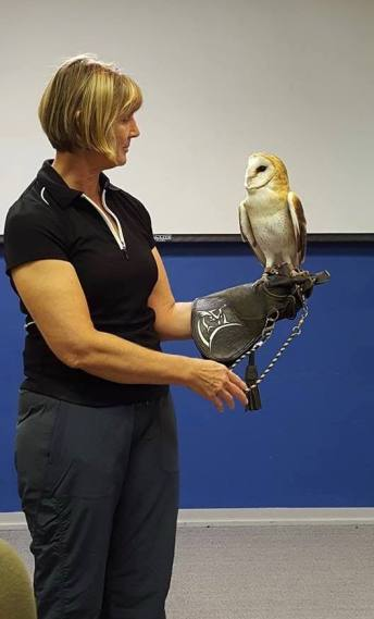 A volunteer with Karma, a rescued barn owl.